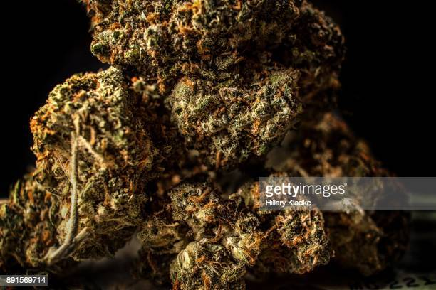 close up of marijuana - hashish stock pictures, royalty-free photos & images