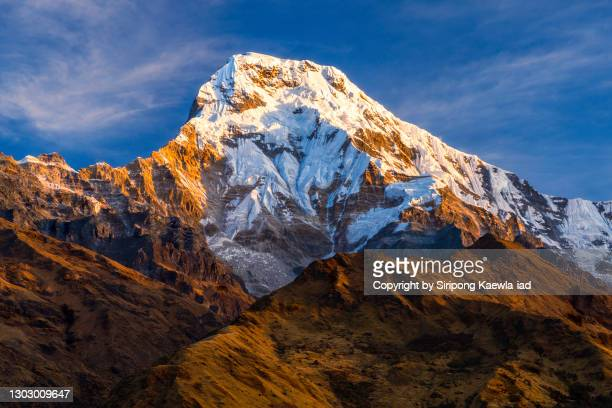 close up of mount annapurna south from tadapani village, nepal. - annapurna south stock pictures, royalty-free photos & images