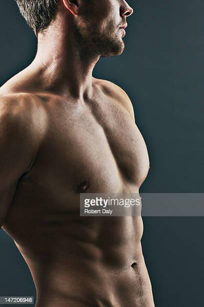 close up of muscular man - bröstkorg torso bildbanksfoton och bilder