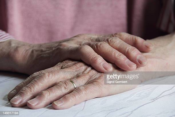 close up of older womans hands - sigrid gombert stock pictures, royalty-free photos & images