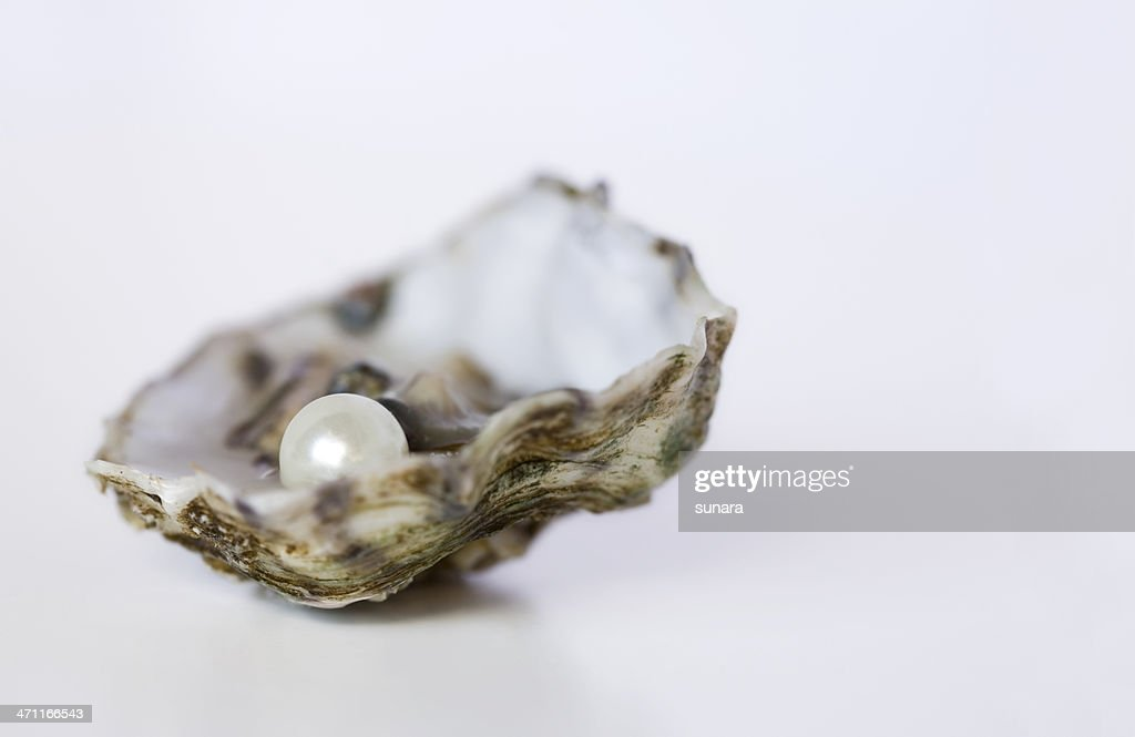 Close up of oyster with pearl on white background : Stock Photo