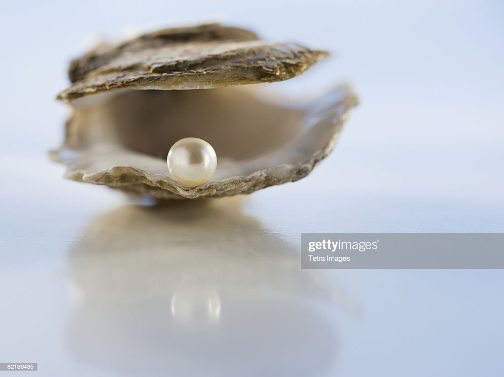 Close up of pearl in oyster shell : Stock Photo