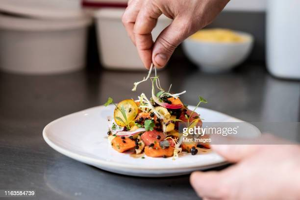 close up of person garnishing plate of salad with some herbs. - human hand stock pictures, royalty-free photos & images