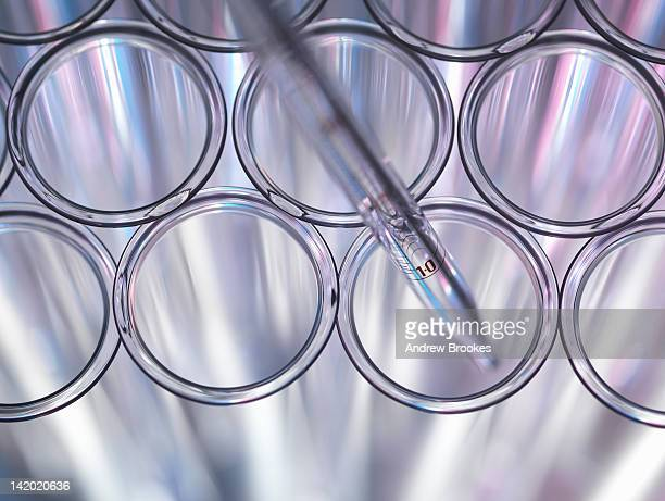 Close up of pipette in test tube