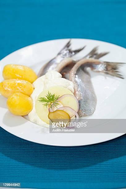 close-up de placa de peixe - arenque imagens e fotografias de stock