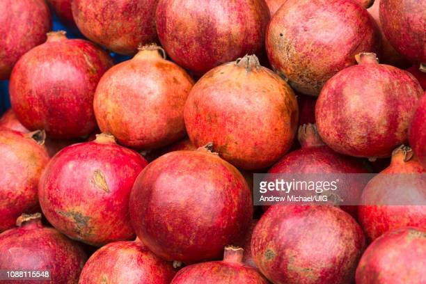 close up of pomegranates on sale at campo de flori market in rome, italy. - michael stock photos and pictures