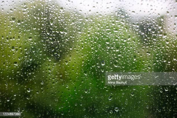 close up of rain drops on window on the rainy day, blurred green trees in background - regen stockfoto's en -beelden