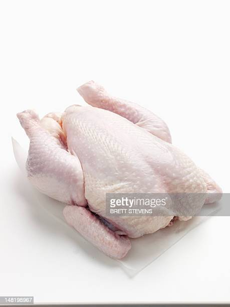 Close up of raw chicken