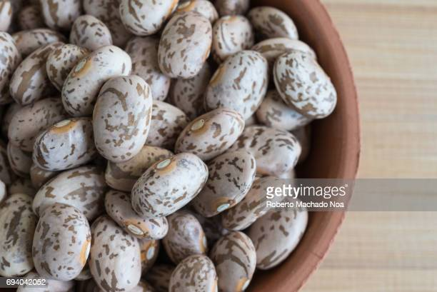Close up of raw Pinto Beans in small clay plate over wooden cutting board Food ingredient in the kitchen