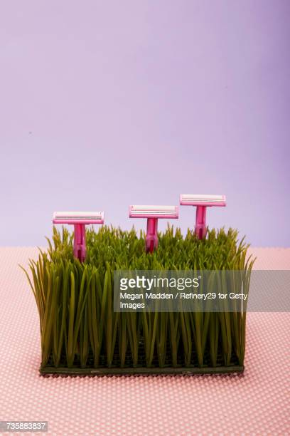 close up of razors - razor stock photos and pictures