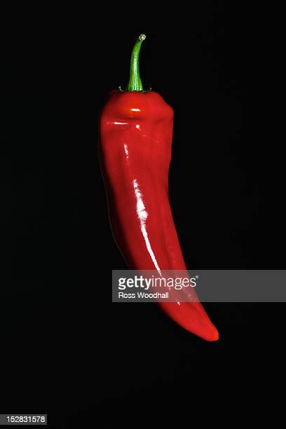 Close up of red chili pepper