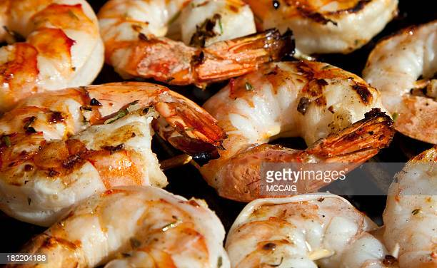 Riesengarnele shrimp