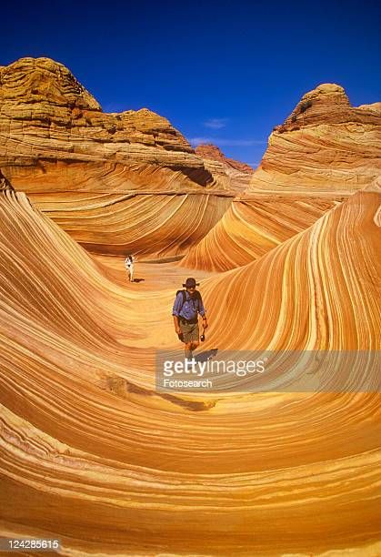 Close up of sandstone stripes, 'The Wave' on Kenab Coyote Butte