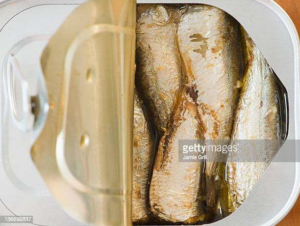 Close up of sardines in can
