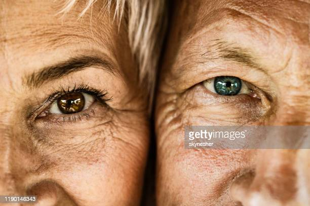 close up of senior couple looking at camera. - brown eyes stock pictures, royalty-free photos & images