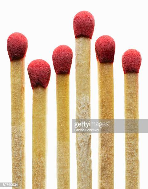 close up of six matches on white - fiammifero foto e immagini stock