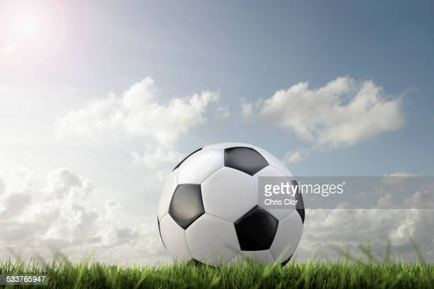 Close up of soccer ball in grass