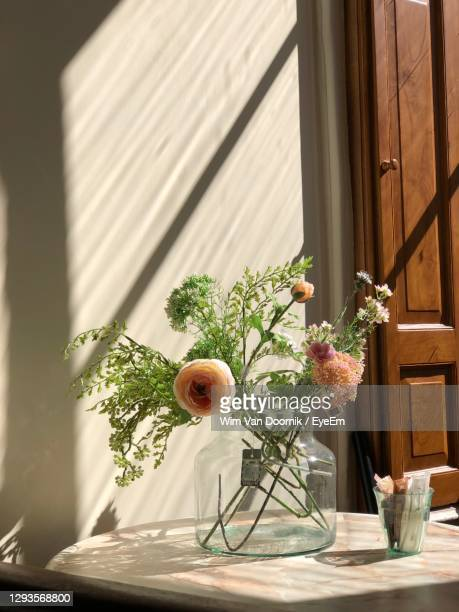 close up of some flowers in an old house in dordrecht - magnoliophyta foto e immagini stock