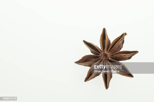 Close Up Of Star Anise Against White Background