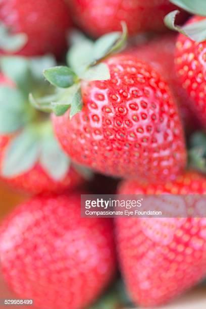 """close up of strawberries - """"compassionate eye"""" foto e immagini stock"""