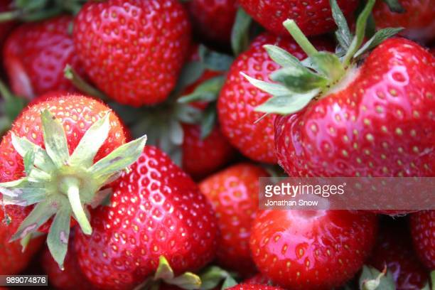 A close up of strawberries