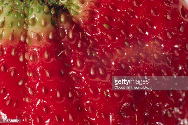 Close up of Strawberry Fruit