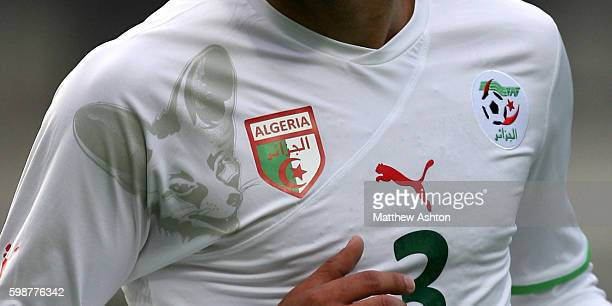 Close up of the Algeria football shirt with their national animal the Fennec Fox