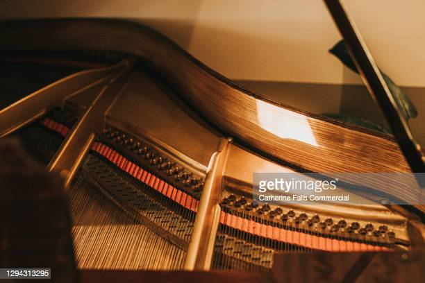 close up of the inner workings of a wooden baby grand piano - human joint stock pictures, royalty-free photos & images