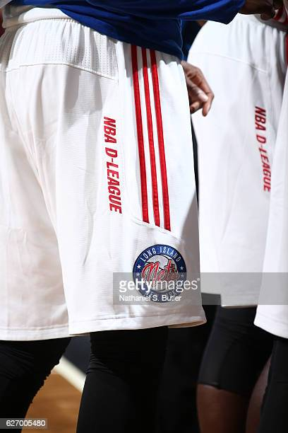 A close up of the Long Island Nets logo during an NBA DLeague game between the Windy City Bulls and the Long Island Nets on November 29 2016 at...