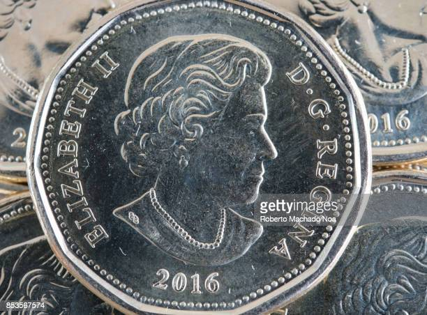 Close up of the loonie or Canadian dollar coin The coin is shiny dated in 2016 and depicting the Queen Elizabeth II