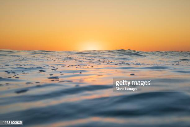 close up of the ocean surface as the sun starts to rise and  colour it golden. - オーストラレーシア ストックフォトと画像