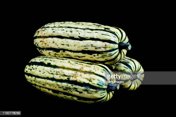 Close up of three Delicata squash on black background.