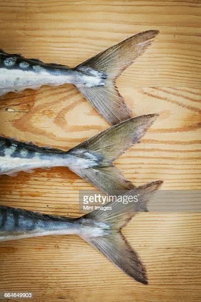 Close up of three fresh Mackerel lying on a chopping board, detail of tail.