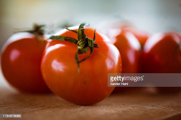 Close up of tomatoes on February 07 2019 in Berlin Germany