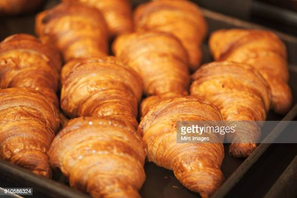 close up of tray of freshly baked croissants in a bakery. - croissant stock pictures, royalty-free photos & images