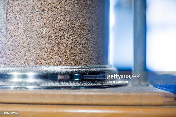 close up of wholewheat in a container at wheat mill - sigrid gombert stock-fotos und bilder