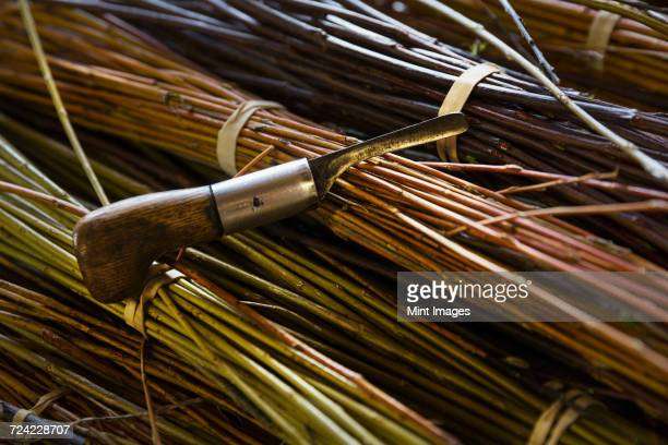 Close up of willow bundles and hand tool in a basket weavers workshop.