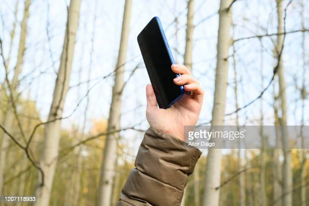 close up of woman hand holding a the cell phone in the forest. - radio wave stock pictures, royalty-free photos & images