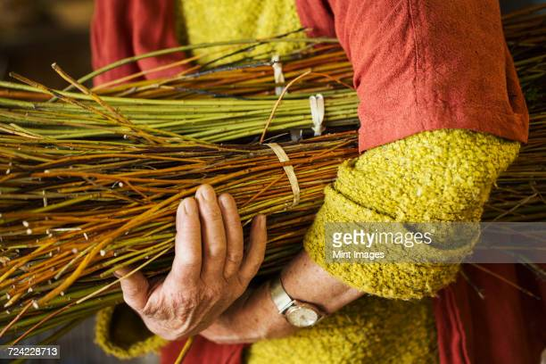 Close up of woman holding a willow bundle in a basket weavers workshop.