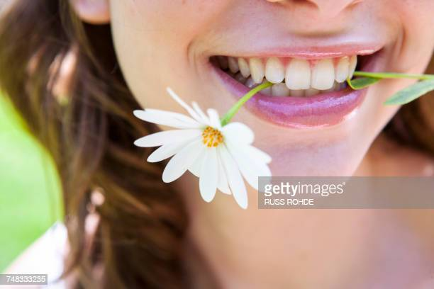 Close up of woman with daisy in teeth