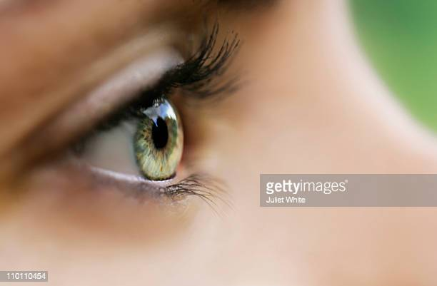 close up of woman's eye - hazel eyes stock pictures, royalty-free photos & images