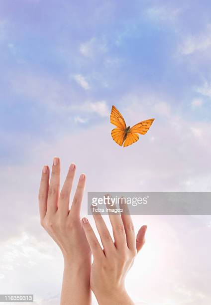 Close up of woman's hands and flying butterfly against blue sky