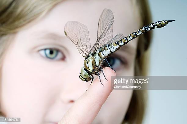 Close Up Portrait of  Young Girl Looking At a Dragonfly.