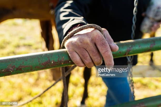 Close up ranchers rough hand on a gate holding a rein