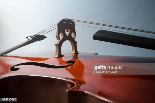 close up shot of cello bridge - musical instrument string stock pictures, royalty-free photos & images