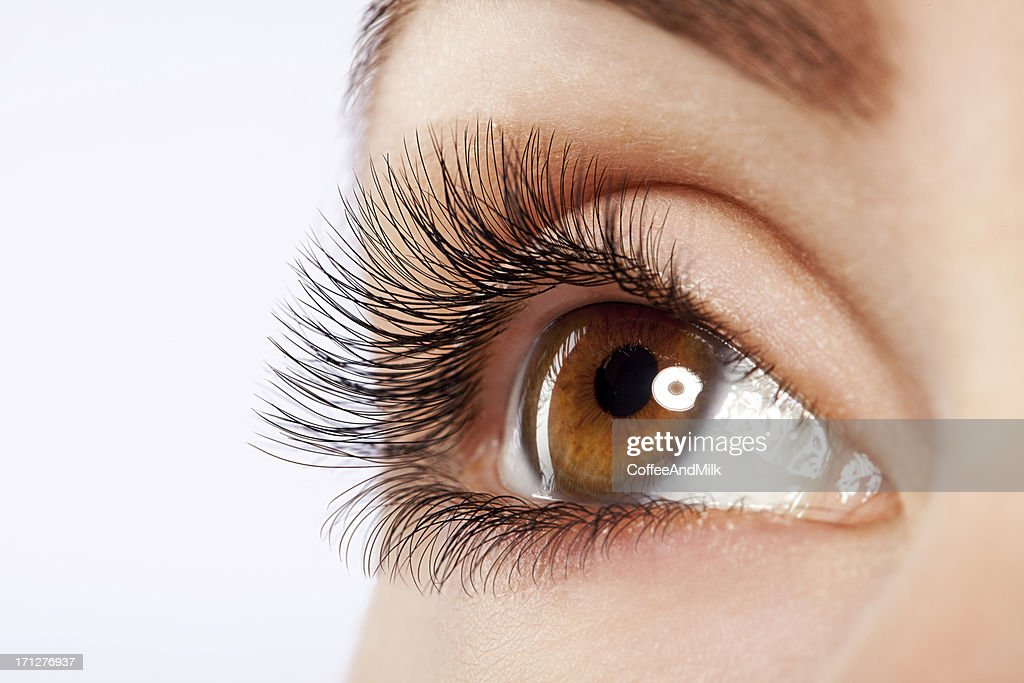 Close up studio shot of woman's eye : Stock Photo
