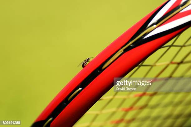 A close up view of a flying ant on a racket on day three of the Wimbledon Lawn Tennis Championships at the All England Lawn Tennis and Croquet Club...