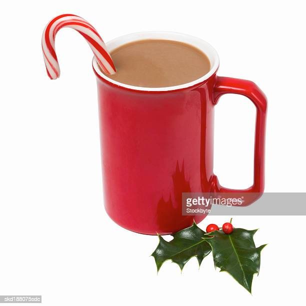Close up view of a mug of hot chocolate and a piece of holly