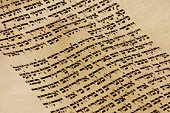 Close up view of a page of text from the Torah