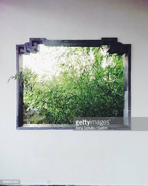 Close Up View Of Ornate Window With Lush Foliage Outside